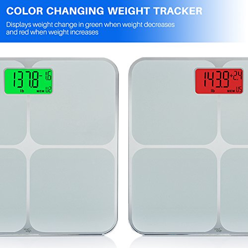 The 8 best bathroom scales with memory