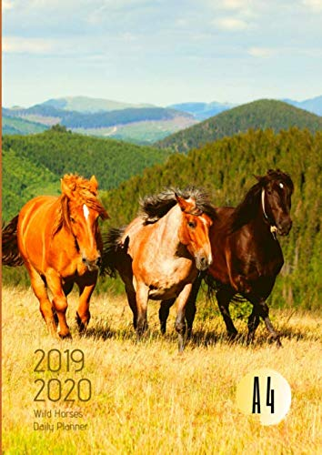 - 2019-2020 Back To School Planner With Hours Wild Horses Goals A4 Academic Daily Organizer: Hourly Schedule In 15 Minute Interval; Class Semester ... & Weekly Journal; Useful For UK & US Students