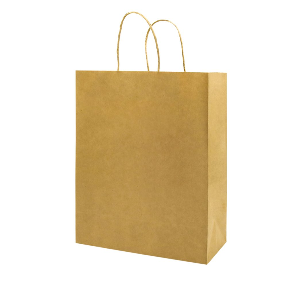 Bagmad Thicker Paper 50 Count 10x5x13, Large Kraft Paper Shopping Bags with Handles,Gift Natural Party Retail Craft Brown Bags,50PCS