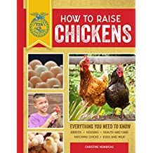How to Raise Chickens: Everything You Need to Know (FFA)