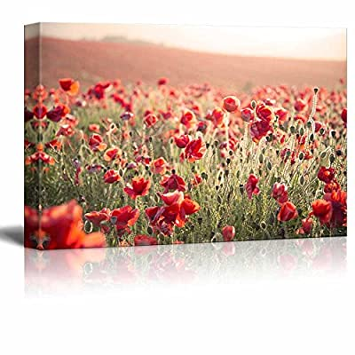 Canvas Prints Wall Art - Beautiful Landscape Image of Summer Poppy Field Under Stuning Sunset Sky with Cross Processed Retro Effect - 24