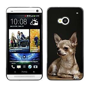 PC/Aluminum Funda Carcasa protectora para HTC One M7 Chihuahua Tiny Pet Dog Canine Purse / JUSTGO PHONE PROTECTOR