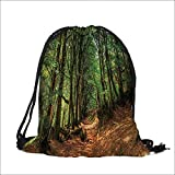 """Drawstring Cotton Linen Cloth Woodland Woodland Scene with Trees and Pathway Foliage Trunk Greenery Scenic Craft Gift Storage Pocket Bag 6.5""""W x 8.5""""H"""
