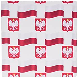 3dRose Flag and Coat of Arms of Poland In a Colorful Pattern Mouse Pad (mp_184177_1)