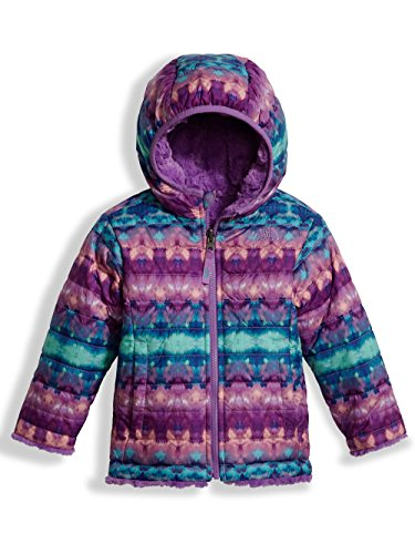 The North Face Toddler Girl's Reversible Mossbud Swirl Jacket - Algiers Blue Fair Isle Print - 2T (Past Season) (North Jacket Mountain Face Light)