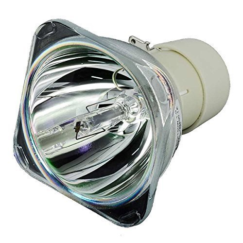 Kingoo BL-FU240A SP.8RU01GC01 Excellent Projector Bare Bulb Lamp Compatible for BENQ HD25-LV-WHD EH300 HD30 HD2500 -150 days warranty by Kingoo