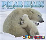 Polar Bears, Jill Anderson, 1559719753