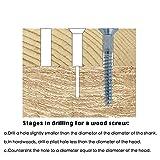 T.K.Excellent Phillips Flat Head Wood Screws