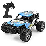 FitMaker RC Cars, All Terrain Remote Control High-Speed Offroad 2.4Ghz 2WD Remote Control Monster Truck, Best Gift for Kids and Adults (Upgraded version)