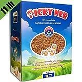Hatortempt Pet Bird Supplies