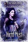 Bargain eBook - Night Myst