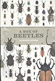 A Box of Beetles : 100 Postcards of the Most Striking Breeds