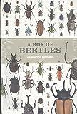 A Box of Beetles: 100 Beautiful Postcards