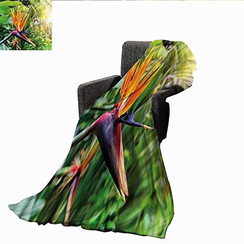 PearlRolan Faux Fur Throw Blanket,Plant,Bird of Paradise Flower,Soft Fabric for Couch Sofa Easy Care 50