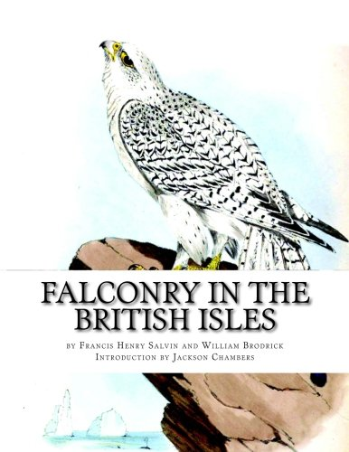 Falconry in the British Isles