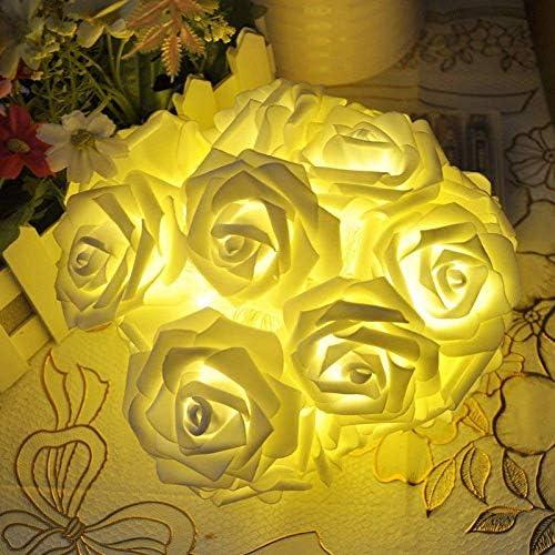 Partido de rosa del LED Luz de la secuencia de la batería de San Valentín Día Hada Garland cadena boda de Navidad iluminación de la decoración, Blanco, 2M ANGANG (Color : Warm White)