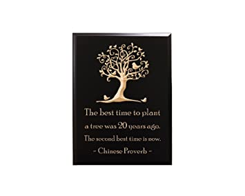 Amazoncom Timbercreekdesign The Best Time To Plant A Tree Was 20
