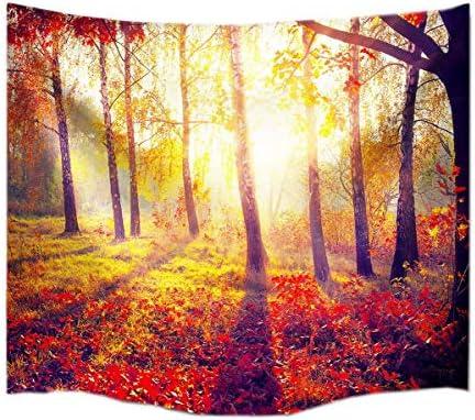A.Monamour Hermosa Mañana Bosque Rojo Bosques Árboles Sol Paisaje Fotografía Impresión Tela Pared Colgante Decoración Art Tapiz Mural para Dormitorios: Amazon.es: Hogar