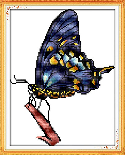 (Full Range of Embroidery Starter Kits Stamped Cross Stitch Kits Beginners for DIY Embroidery (Multiple Pattern Designs) - The Blue Butterfly)