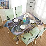 Camping Rectangle Tablecloth Wrinkle Free Tablecloths Travel,Shaman Rock Lake Baikal in Russia Coastal Theme Sun Rays Scenic Vista Print,Green Brown Blue W52 xL70,for Cards