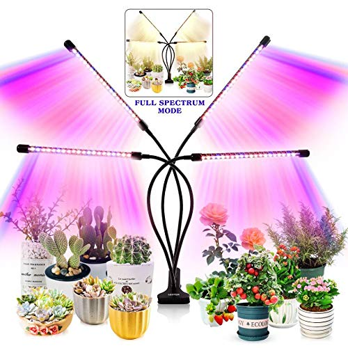 Grow Light for Indoor