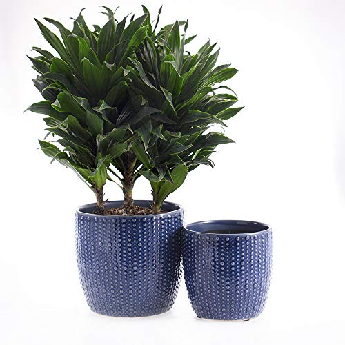 SRXing Ceramic Flower Pot Garden Planters 6.5″ and 5.5″ Set of 2 Indoor Outdoor, Modern Nordic Style Plant Containers (Blue)