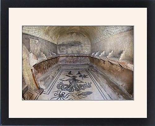 Framed Artwork of Floor of tepidarium in Roman central baths mosaic depicting Triton surrounded