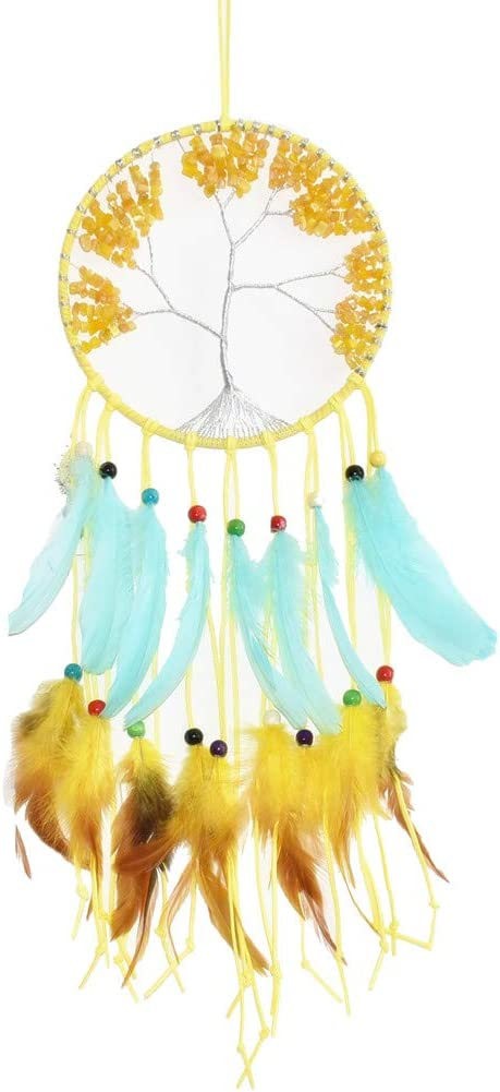 Native American Indian Animal Dream Catcher Wall Picture Black Framed