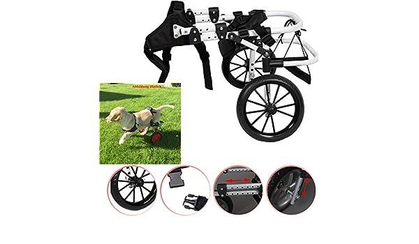 Silla perro perros silla Andador Perros gehilfe rollwagen ...