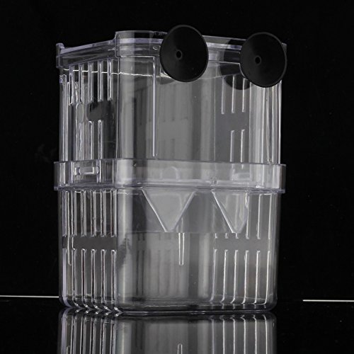 refaxi clear aquarium fish breeding divider tank box isolation hanging breeder incubator the. Black Bedroom Furniture Sets. Home Design Ideas