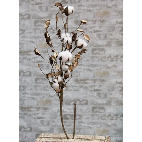 Heart of America Cotton Branch with Shells 30''