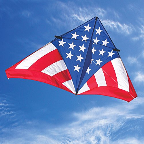(Into The Wind 7-ft USA Levitation Delta Kite)