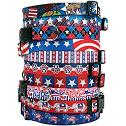 Patriotic USA Dog Collar - with Tag-A-Long ID Tag System - Colonial Stars - Small 10 to 14 inch