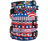 Patriotic USA Dog Collar - with Tag-A-Long ID Tag System - GOP Republican - Small 10 to 14 inch