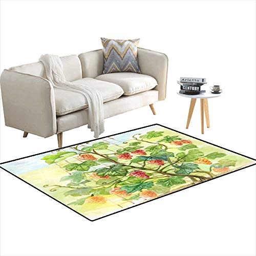 Girls Bedroom Rug Watercolor Grapevine Hand-Drawn Illustration in Vintage Style 3'x12'