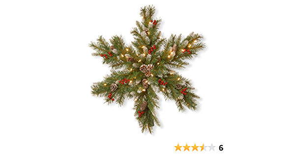 Amazon Com National Tree 32 Inch Frosted Berry Snowflake With 50 Warm White Battery Operated Led Lights With Timer Frb3 300 32s Bc Home Kitchen