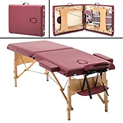 Portable Massage Table Free Carry Case Chair Bed Spa Facial