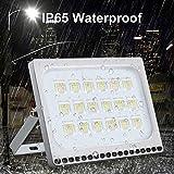 LED Flood Light, Sararoom 8000 Lumen 6000-6500K