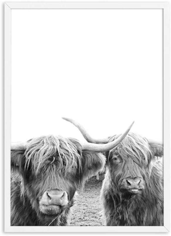 Freedom Highland Cattle Posters and Prints Black White Wall Art Canvas Painting Cow Wall Pictures for Living Room Art Decoration-50x70cm
