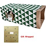 PetJollies Cat Paper Bag Tunnel Toy by Cat Activity Play Bag - Fun Interactive Cat Toys - Hiding - Sneaking - Watching - Gift for Cat Lovers