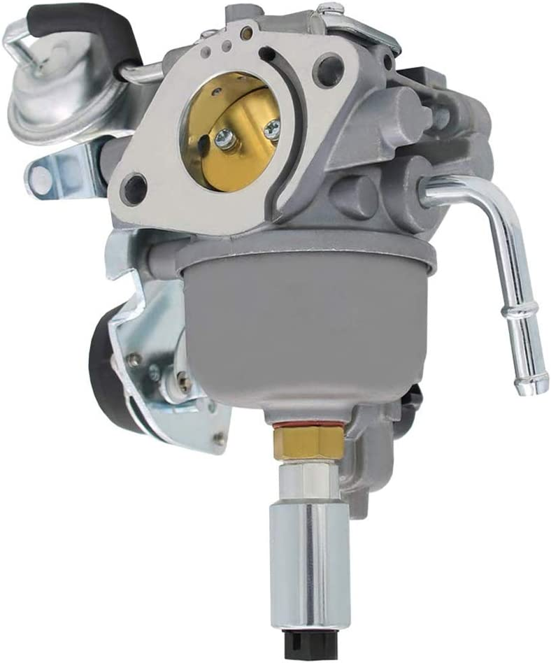 541-0765 Carburetor for Onan 5500 Generator Replaces 5410765 A043B781 A041P558 Grand Marquis Gold Generator with Mounting Accessories