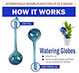 5Star Aqua Plant Watering Globes - Automatic Watering Ball Bulbs - Self Watering Plant Bulbs (4, Large)