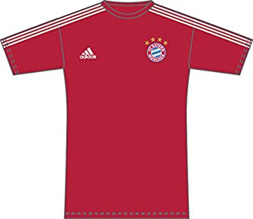 e96b86590fe26 ireland champions league bayern jersey 81c0f 4d0af