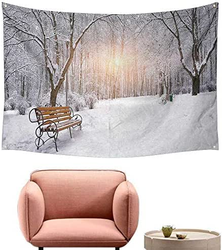 Agoza Living Room Tapestry Winter Snow Covered Leafless Trees and Benches in The City Park Sunset Woodland Outdoors Occlusion Cloth Painting 59