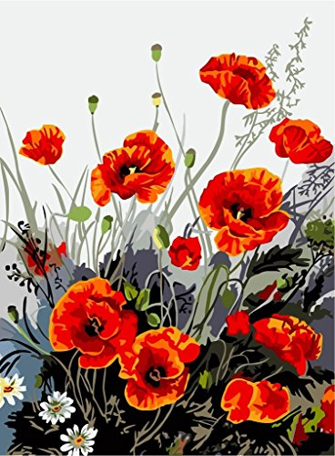 [, Wooden Framed or Not ] Diy Oil Painting by Numbers, Paint by Number Kits - Red Poppy 1620 inches - PBN Kit for Adults Girls Kids White Christmas Decor Decorations Gifts
