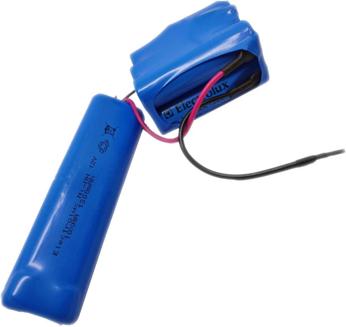 ELECTROLUX - KIT BATTERIE ERGO RAPIDO POUR ASPIRATEUR ELECTROLUX: Amazon.es: Electrónica