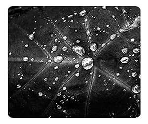 Decorative Mouse Pad Art Print Landscape and Plants Rain Drops 12