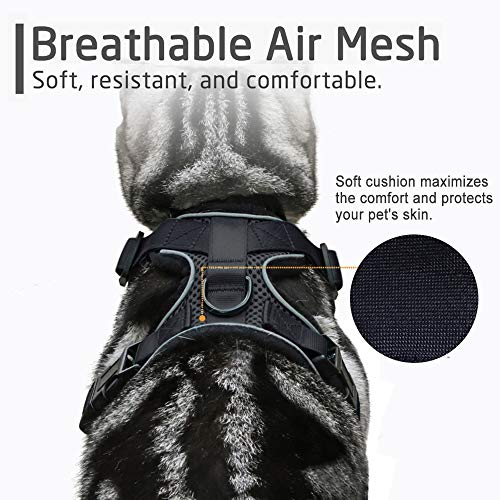 Rabbitgoo Small Dog Harnesss No Pull Pet Vest Harness Adjustable Soft Mesh Safety Vest Harness Easy Control for Small Dogs Cats Walking Running Training