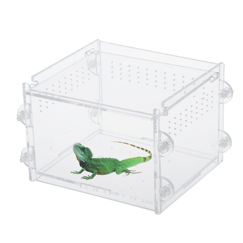 taonmeisu acrilico trasparente Acquario Rettile Insetti Goldfish gabbia trasporto House