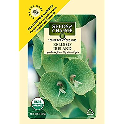 Seeds of Change S11052 Certified Organic Bells of Ireland Flower: Garden & Outdoor